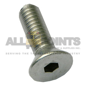 DOOR HINGE SCREW